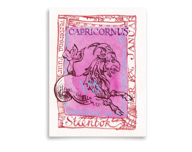 Sterrenbeeld Capricornus / Steenbok